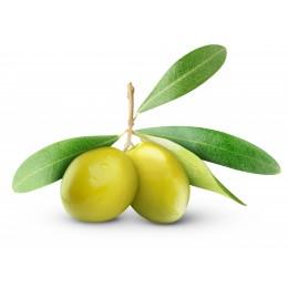Squalane (végétal)