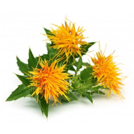 Carthame bio (huile végétale de)