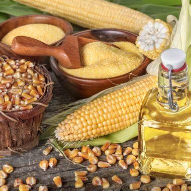 Zoom sur les huiles sud-américaines