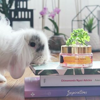 // MAWENA & CO // 🌸⁣ .⁣ . ⁣ 🇫🇷⁣ Les tests sur les animaux, c'est vraiment pas pour nous, la preuve ! 😉🐰Depuis cette vidéo, on est passées aux labels Vegan et Cruelty-free ! ⁣ .⁣ 👉 Mettez un petit 💚 en commentaire si vous aussi, vous êtes complètement gaga de @j.a.c.k.t.h.e.b.u.n.n.y. ⁣ .⁣ .⁣ Pour info, ce petit lapin fait partie de l'équipe Mawena. Go follow him ! ⁣ .⁣ .⁣ .⁣ 🇬🇧⁣ Testing on animals is really not for us, here's the proof! 😉🐰⁣ Since filming this video, we have gone full Vegan & Cruelty free⁣ .⁣ 👉 Drop a 💚 in the comments if you have a big crush on @j.a.c.k.t.h.e.b.u.n.n.y. ⁣ .⁣ .⁣ FYI, this pretty little bunny belongs to one of the Mawena team members, go follow him !⁣ .⁣ .⁣ #mawena #veganbeauty #organicskincare #greenbeauty #indiebrand #confidentbeauty #beautenaturelle #beauteengagee #ethicalbeauty #ethicallymade #cosmetiquebio⁣ #crueltyfree #noanimalharm #noanimaltesting⁣ #bunny #bunniesofinstagram