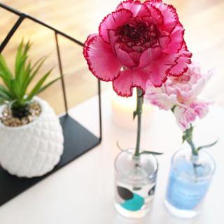 // MAWENA & CO // 🌸⠀ .⠀ . ⠀ 🇫🇷 Saviez-vous que vous pouvez facilement recycler les produits Mawena ? Ils font de magnifiques soliflores ! ⚱️⠀ Pour cela, rien de plus simple: dévissez le flacon, rincez-le et nettoyez-le à l'aide d'un goupillon et placez-y votre fleur préférée 🌷⠀ .⠀ 👉Quelle fleur allez-vous mettre dedans ?⠀ .⠀ .⠀ 🇬🇧 Did you know that you can easily recycle Mawena products ? They make beautiful soliflores ! ⚱️⠀ For that, nothing more simple: unscrew the bottle, rinse it and clean it with a bottle brush, and place your favorite flower there 🌷⠀ .⠀ 👉 What flower are you going to put in?⠀ .⠀ .⠀ #mawena #veganbeauty #organicskincare #greenbeauty #indiebrand #confidentbeauty #beautenaturelle #beauteengagee #ethicalbeauty #ethicallymade #cosmetiquebio #recyclage #oneplanet #soliflore #DIY⠀