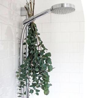 // RITUEL DE BEAUTE // 🧖♀️🌸⠀ .⠀ 🇫🇷 Avez-vous déjà tenté d'accrocher de l'eucalyptus dans votre douche ? ⠀ En plus d'amener une petite dose de couleur, l'eucalyptus a plein de vertus relaxantes et antiseptiques. En plus, elle ouvre les voies respiratoires, ciao le petit rhume 😉⠀ .⠀ .⠀ 🇬🇧 Have you ever tried hanging eucalyptus in your shower ?⠀ In addition to bringing a small dose of color, eucalyptus has plenty of relaxing and antiseptic virtues. In addition it opens the airways, ciao the little cold 😉⠀ .⠀ .⠀ #mawena #veganbeauty #organicskincare #greenbeauty #indiebrand #confidentbeauty #beautenaturelle #beauteengagee #ethicalbeauty #ethicallymade #beautyritual #eucalyptus