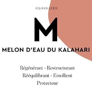 // GLOSSAIRE MAWENA // 🤓📚⁣⁠ .⁣⁠ .⁣⁠ 🇫🇷 Parler beauté c'est bien, mais la comprendre c'est encore mieux ! Avec nos glossaires Mawena, il n'y a même plus à chercher, on vous sert tout sur un plateau.⁠ .⁣⁠ Zoom sur le melon d'eau du Kalahari🔎⁣⁠ .⁣⁠ .⁣⁠ 🇬🇧 Talking about beauty is nice, but getting it is better ! Welcome to our glossary Mawena, where you don't have to ask about our ingredients.⁠ .⁣⁠ Zoom on Kalahari's watermelon🔎⁣⁠ .⁣⁠ .⁣⁠ #mawena #organicskincare #beautenaturelle #FallingInGreen #CosmetiqueBio #watermelon #kalahari #melondeau